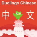Duolingo-Chinese-Review-Thumbnail
